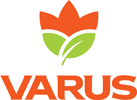 Реклама мережи продуктових супермаркетів VARUS на ВИДЕОБОРДАХ в Днепре