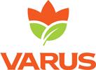 Мережа продуктових супермаркетів VARUS